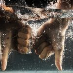 水の中でバッドマークをする手